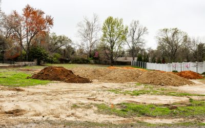 Why Should I Hire a Tree Service for New Construction?