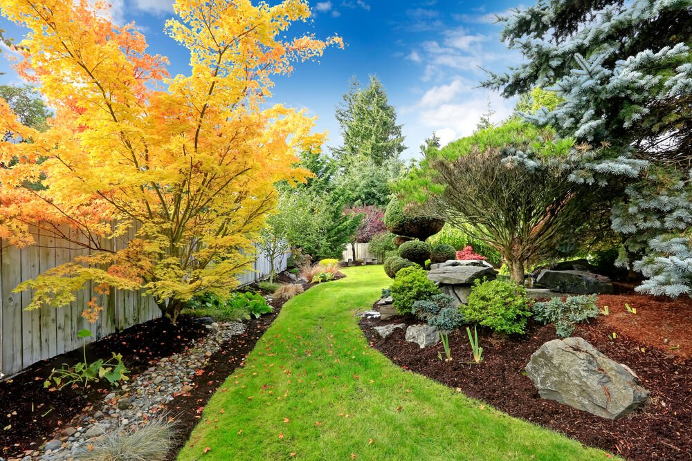 Nationwide Tree Service- August 10 Blog